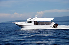 """Sting"" Gulfcraft Touring 36"